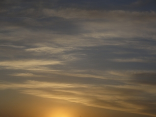 sol11