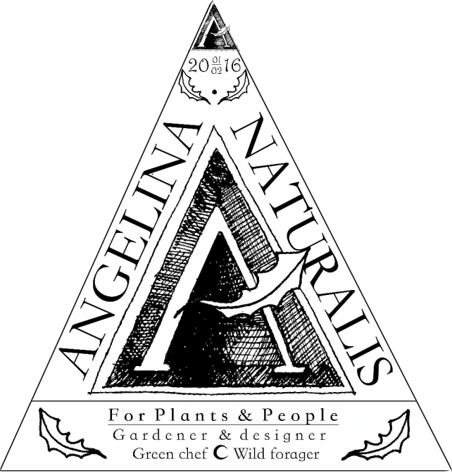 Angelina Naturalis Business LOGO