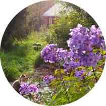 gardening 1a