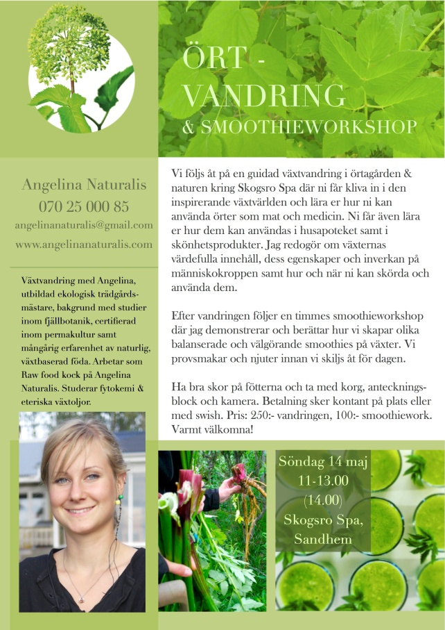 Örtvandring & smoothieworkshop Skogsro 1.jpg