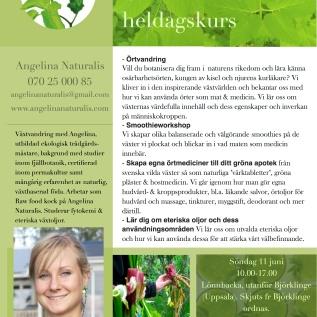 Örtmedicinsk heldagskurs med Angelina - Lönnbacka