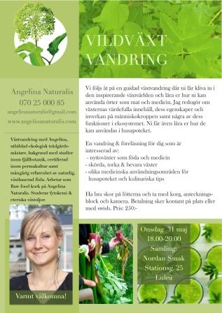 Vildväxtvandring med Angelina Naturalis Luleå