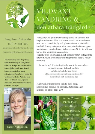 Vildväxtvandring med Angelina Naturalis PITEÅ JUNI 2017